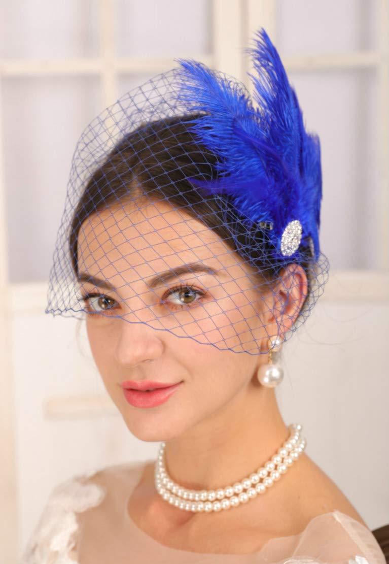 Sither 1920s Mesh Veil Headband Blue Veil with Feather Headband Vintage 20s Headpiece 1920s Flapper Headpiece Hair Accessories for Costume Party Halloween (blue veil)