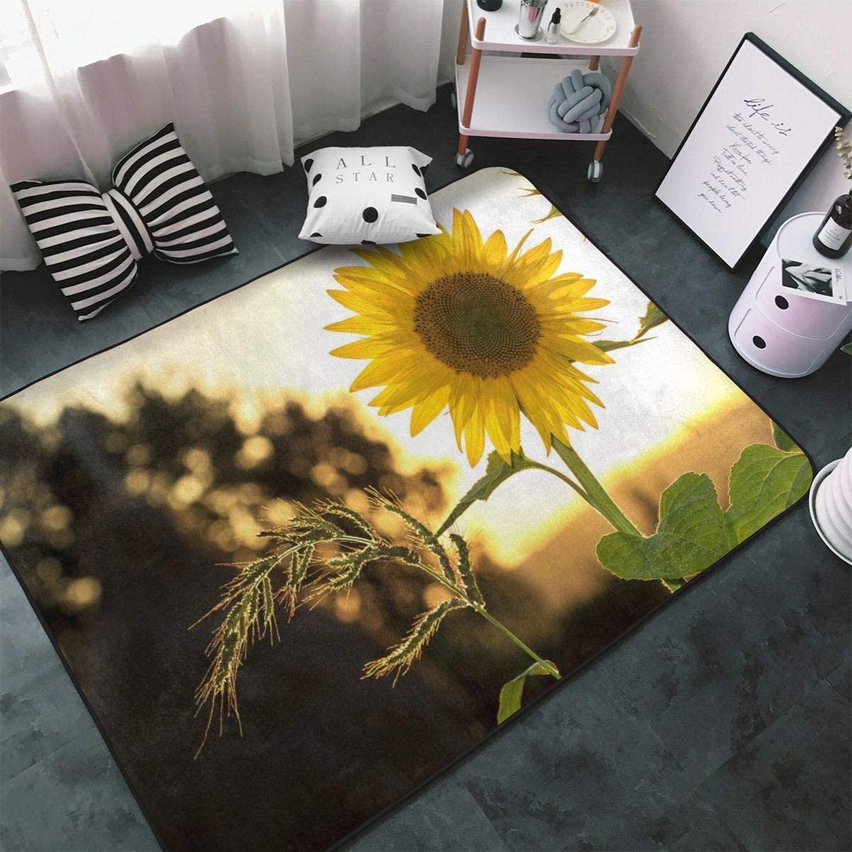 Astede Sunflowers in Bloom Area Rug Non Slip Comfort Yoga Mat Floor Carpet Home Decor for Living Room Bedroom 80x58 Inch
