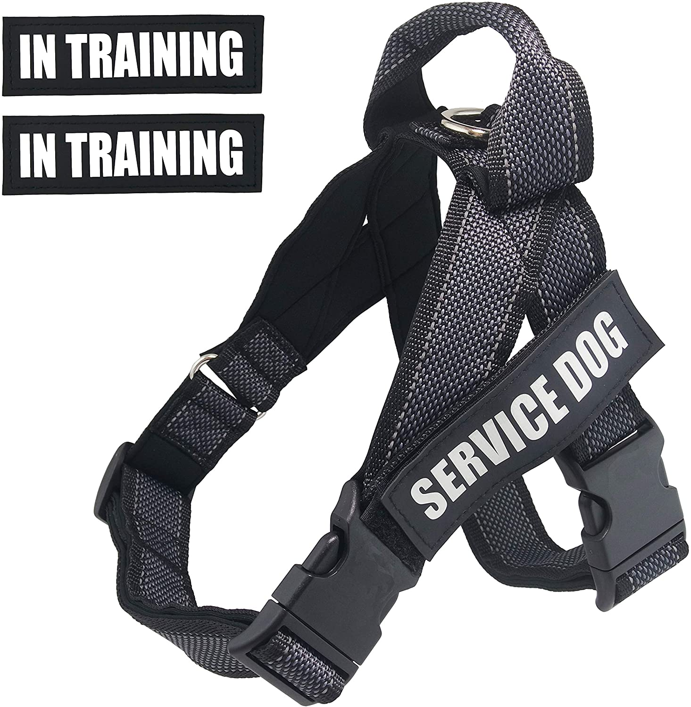 Dihapet Service Dog Vest Harness with Handle, Lightweight Full Adjustable Dog Vest, Neoprene Padded Soft for Summer Outdoor Walk Training