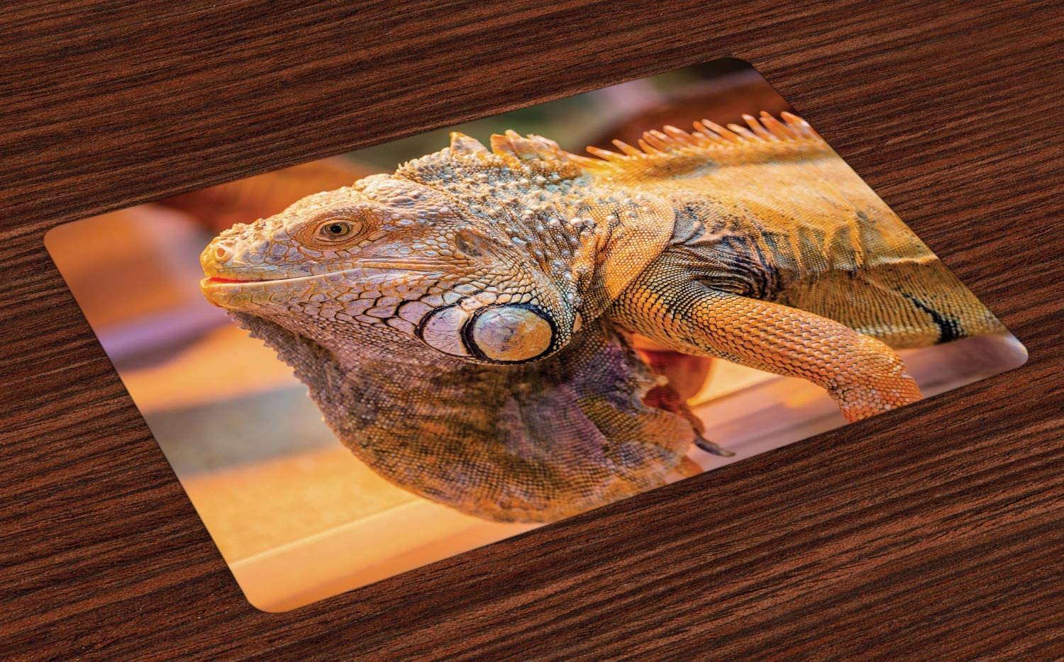 Ambesonne Iguana Place Mats Set of 4, South America Caribbean Indigenous Arboreal Animal with Blurred Background, Washable Fabric Placemats for Dining Table, Standard Size, Orange Grey