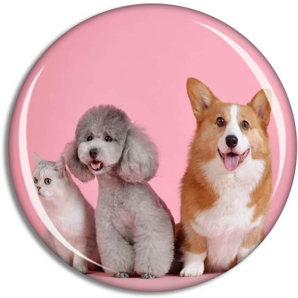 Fridge Magnet Dogs and Cats Cute Animal Souvenir Animals Magnet Collection Gift Home Decoration Office Whiteboard