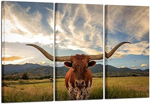 Dapan 3 Pieces of Animal Wall Art Farmhouse Home Decoration Black and White Style Brown Highland Cattle Texas Longhorn Cow Pictures Print on Canvas -960 (16x32inch*3-Unframed,brown)