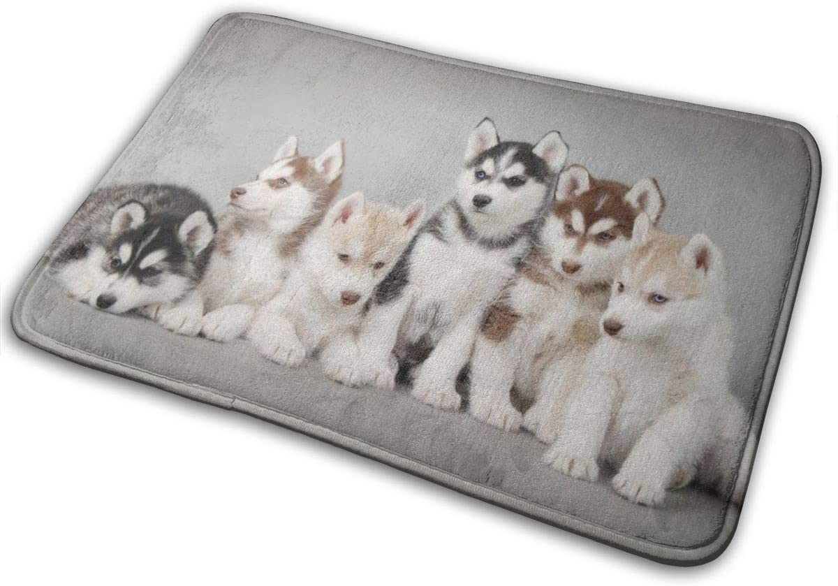 URTEOM Dogs Husky Indoor Doormat, Outdoor Mat Non Slip Washable Quickly Absorb Moisture and Resist Dirt Rugs Personalized Bath mat for Entrance