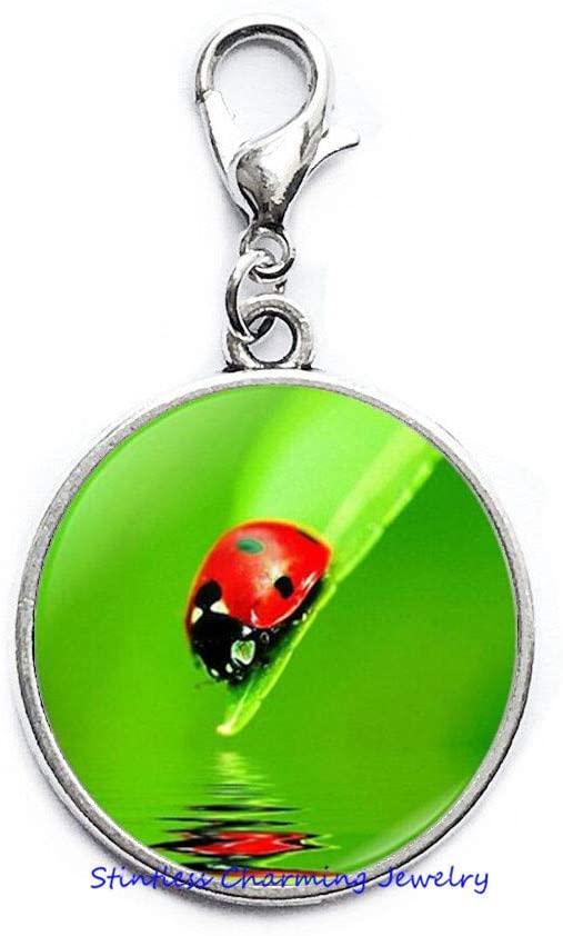 Ladybug Zipper Pull,Ladybird Charm Gift,Ladybird Jewelry,Lady Bug Zipper Pull,Ladybug Gifts, Woman Zipper Pull-JV183