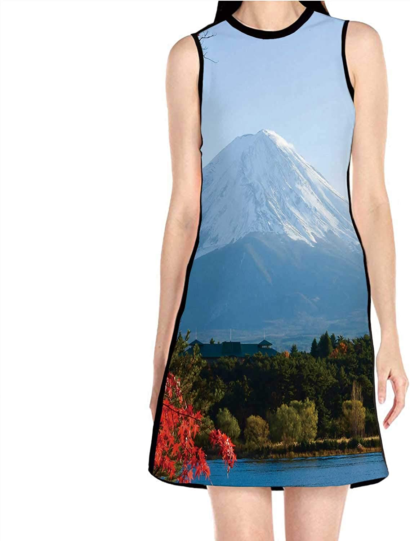 Mt.in Autumn at Lake kawaguchiko Japan,Womens Comfy Swing Tunic Long Sleeve T-Shirt Dress S