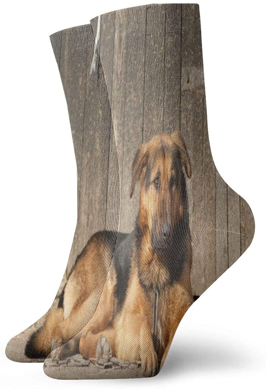Mens Womens Crew Socks Funny Bichon Frise Dog Cute Puppy Athletic Socks Customized Anti Odor Cushion Short Boot Stocking