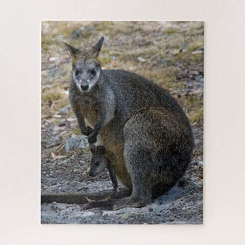 Puzzles for Adult Kids 1000 Piece Jigsaw Puzzle, Cute Wallaby Mother and Baby Joey, Puzzle & Fun Fact Poster & Decompressing Fun Family Game