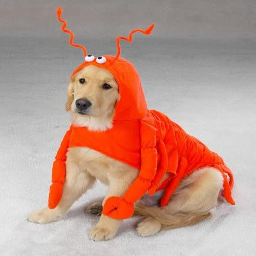 Casual Canine Lobster Paws Dog Halloween Costume MEDIUM