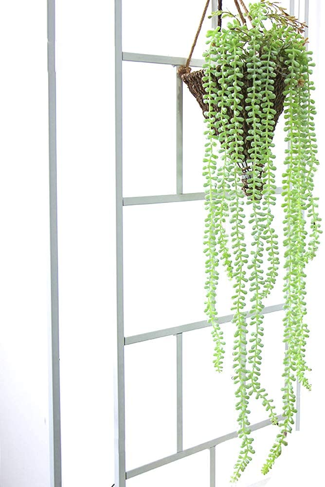 LI HUA CAT Artificial Green Plant 1 Piece Simulation Wall Hanging Buddha Bean Home Decoration Fake Flower Wedding Simulation Plant Broad Bean Chlorophytum (Senecio rowleyanus-02)
