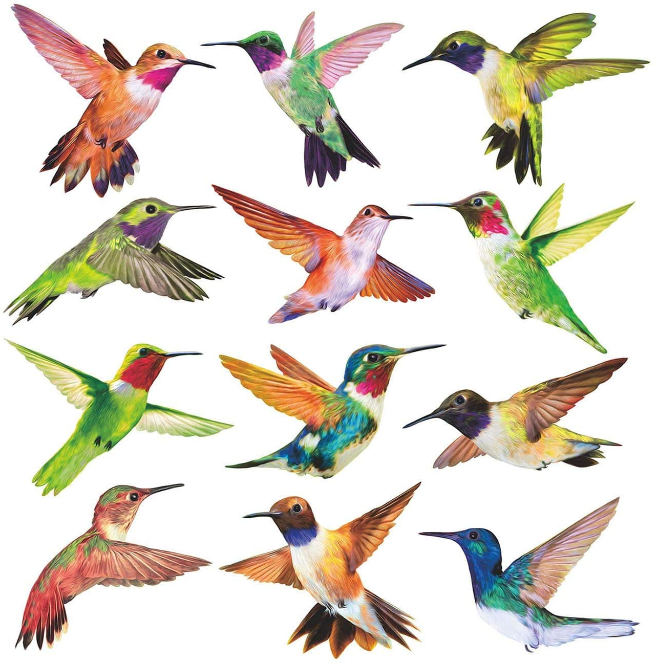 Anti-Collision Window Clings Bird Alert Collision Decals to Prevent Bird Strikes on Window Glass - Set of 12 Hummingbirds