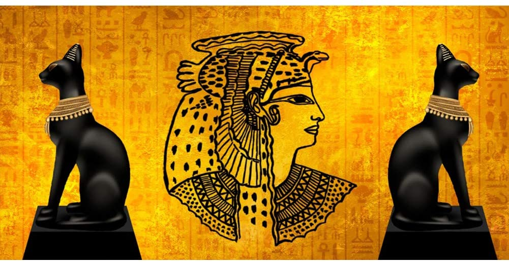 Leowefowa 12x8ft Large Vinyl Photography Backdrop Egyptian Cats Statuette Pharaohs Ancient Wall Murals Background for Photography Event Filming Party Decoration Studio Photo Booth Backdrop