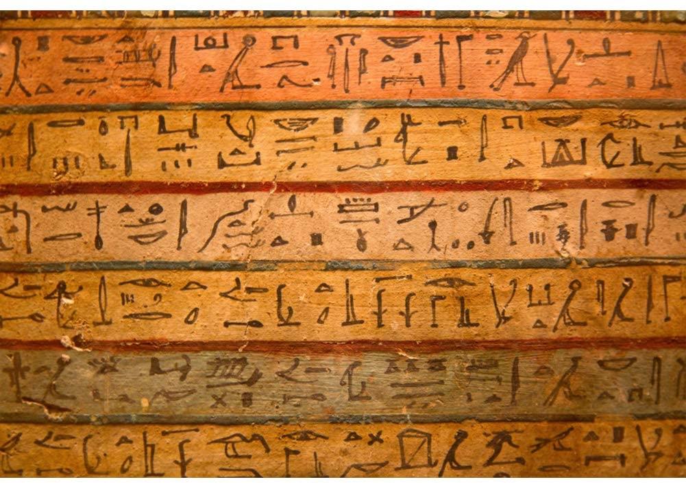 CSFOTO Egyptian Backdrop 10x7ft Hieroglyphic Backdrop Ancient Egyptian Mural Painting Backdrop History Culture Interior Wallpaper Theme Party Decor Museum Decor Adults Portrait Studio Props