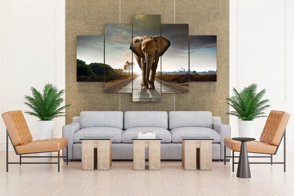 Epikkanvas Art - Elephant Strolling on Road - 5 Piece Canvas
