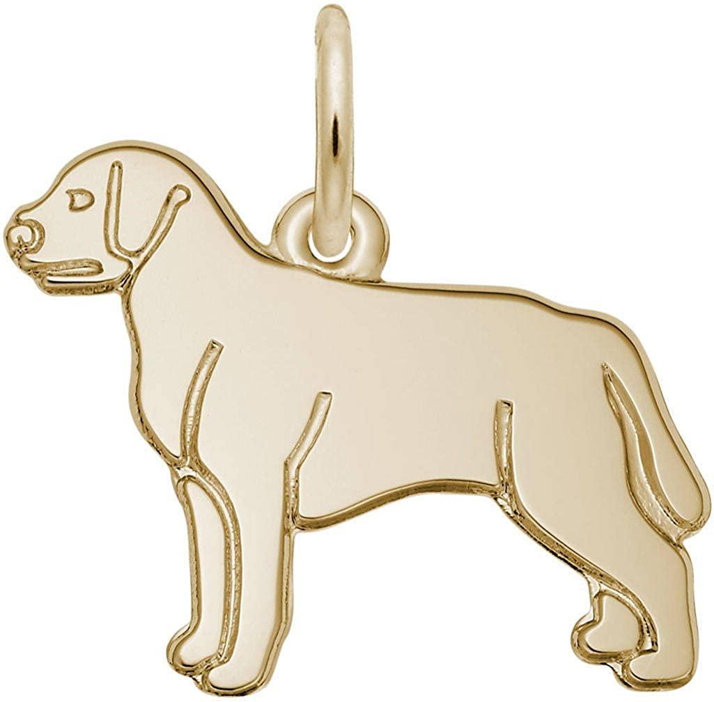 Rembrandt Flat Labrador Retriever Dog Charm