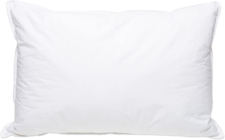 Pillowtex High End White Goose Down Soft Pillow King