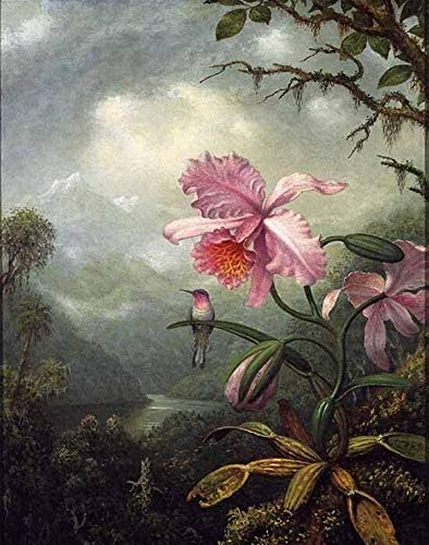 TYmall 12X16 Inch Vintage No Frame Canvas Art Print Huge Martin Johnson Heade - Hummingbird Perched on an Orchid Plant Oil Painting Look Wall Room House Decor