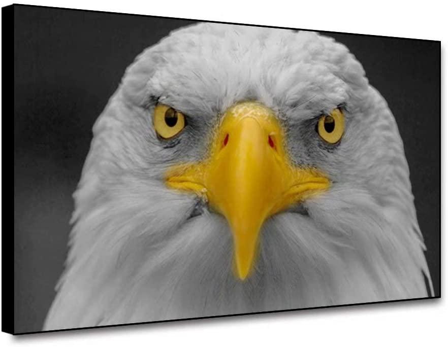 shensu Framed Canvas Wall Art Prints Animal Posters Wildlife Bald Eagle Head Bird Yellow Beak Black Background Wall Decor Artwork for Modern Living Room Bedroom Bathroom Office Home Decor 10X8inch