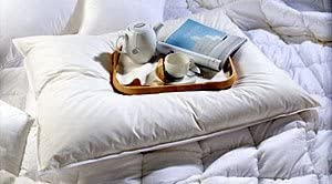 DownTown Company, Slumber Pillow - Oversized Overfilled Pillow - Extra Large Size 31x40 ---Free Pillow Protector Included