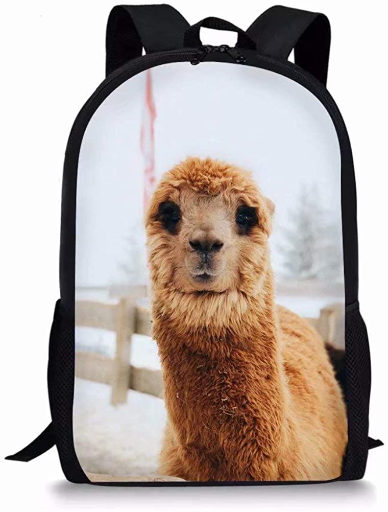 Dellukee Big School Backpack for Elementary Girls Boys Book Bag Cute Durable Kids Daypack