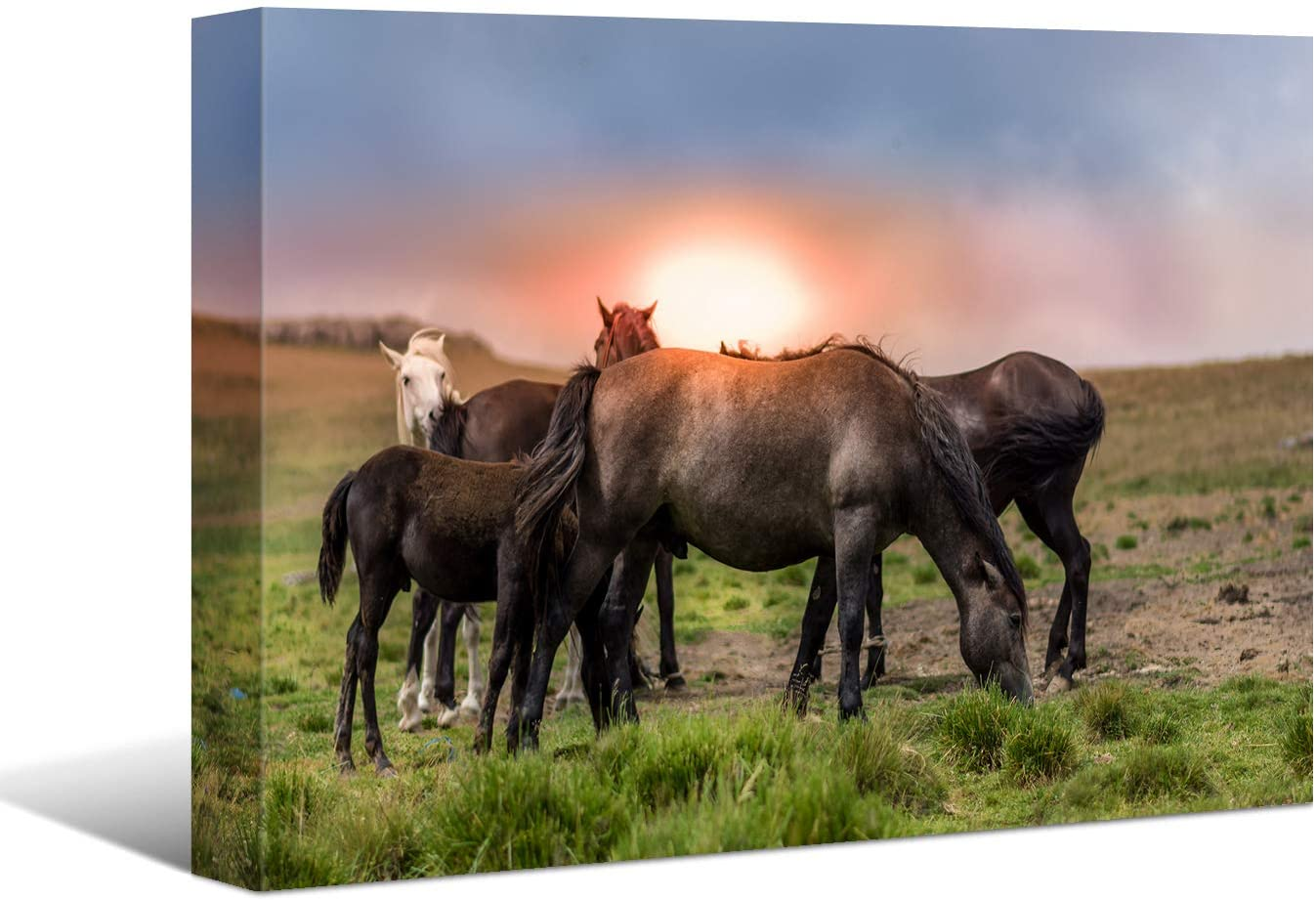 Laoife,A Herd of Horses Picture Prints on Canvas, Modern Wall Art Adornment Picture Decor for Living Room, Bedroom and Office,16x12 Inches