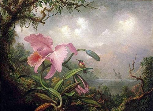 TYmall 12X16 Inch Vintage No Frame Canvas Art Print Oil Martin Johnson Heade - Orchid and Hummingbird in Landscape Oil Painting Look Wall Room House Decor