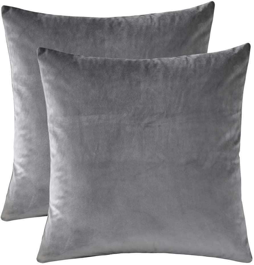 Rythome Set of 2 Velvet Throw Pillow Cases - 12