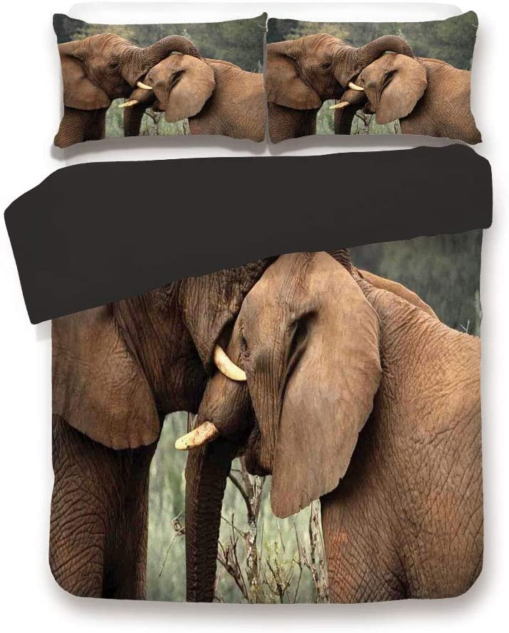 Black 3pc Bedding Set,Two Wild Savanna Elephants Wrestling Cute Nature Icons South African Animals Game Photo Full Size Duvet Cover Set,Printed Comforter Cover with 2 Pillowcases for Teens Boys Man