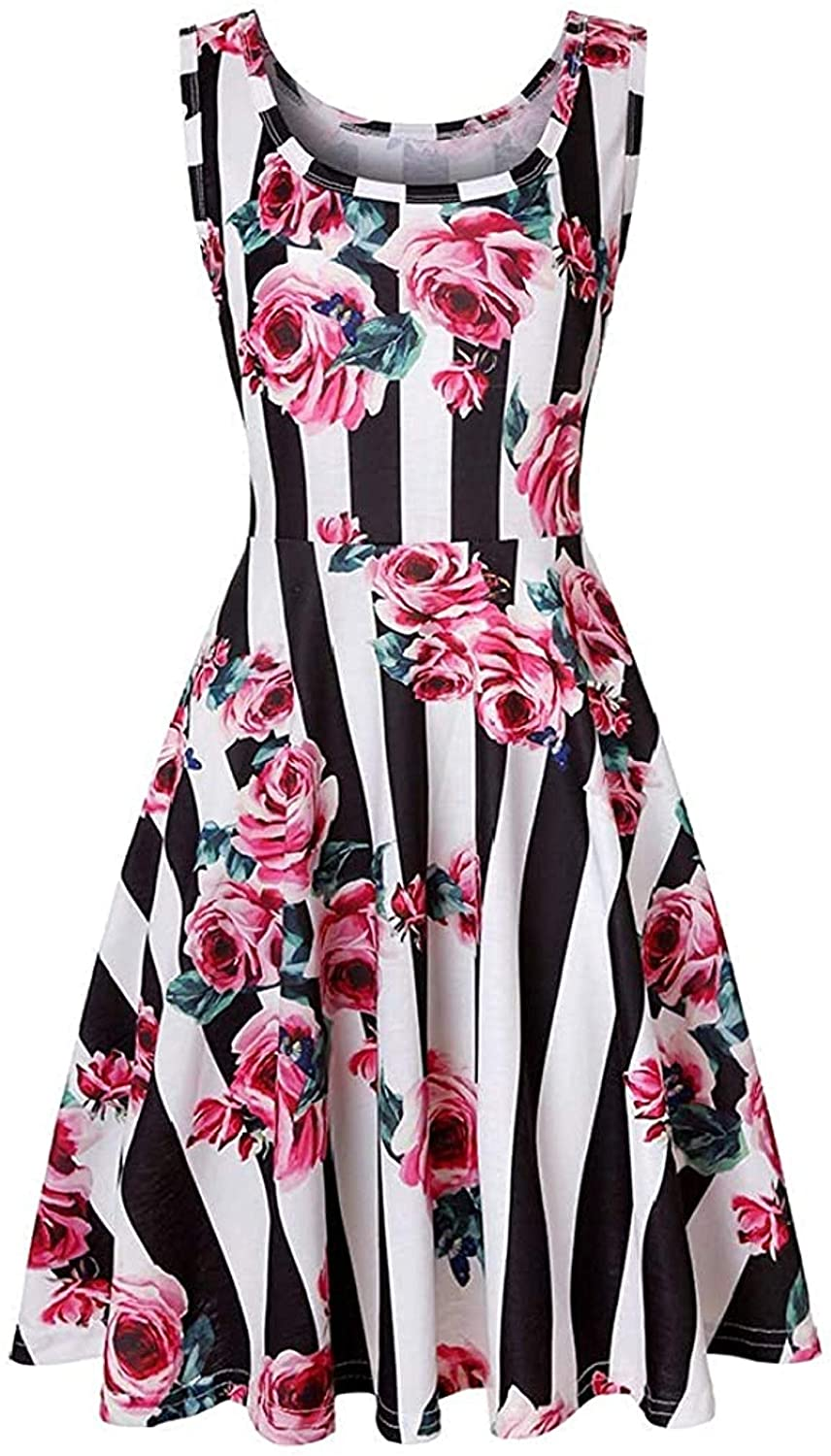 Women Flare Sleeveless O Neck Summer Floral Print Beach Dress,Nine,Small
