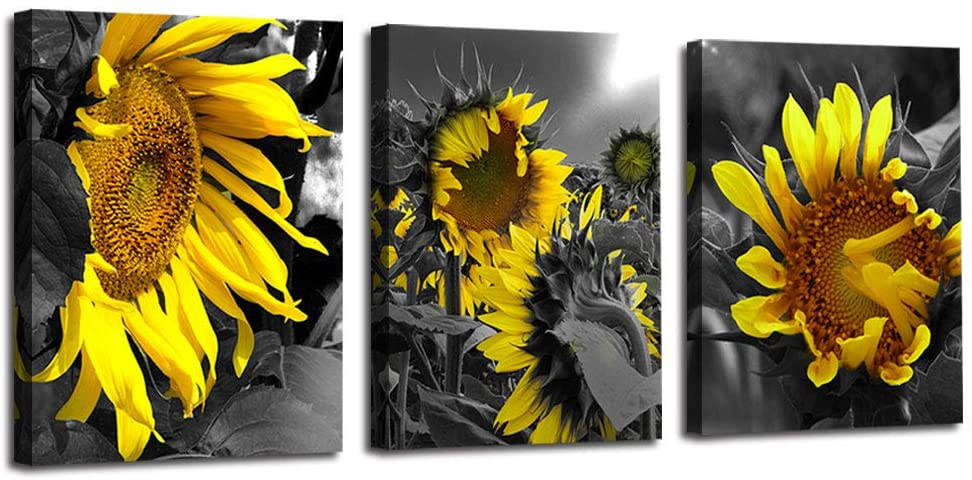 Arjun Canvas Wall Art Sunflowers Yellow Flowers Pictures Bloosom Modern Florals 3 Panels 16x20, Black and White Painting Prints Framed for Bedroom Kitchen Dinning Room Living Room Office Home Décor