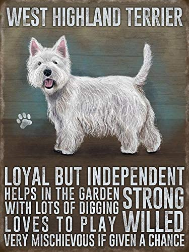 PAGAIXI Tin Sign 8 x 12 Westie Personalized Plaques Poster for Shop Bar Man Cave Cafe Metal Signs Vintage Wall Decor