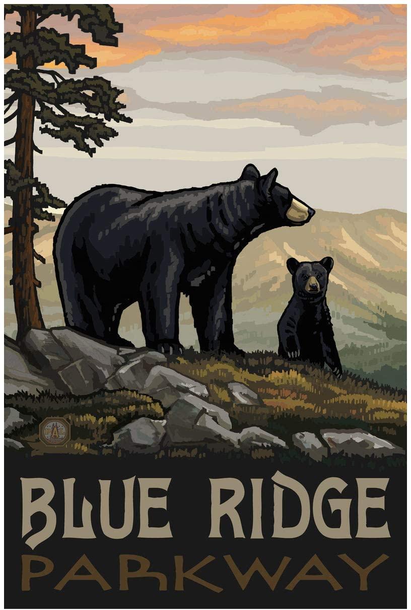 Blue Ridge Parkway Black Bear Family Giclee Art Print Poster from Original Travel Artwork by Artist Paul A. Lanquist 24