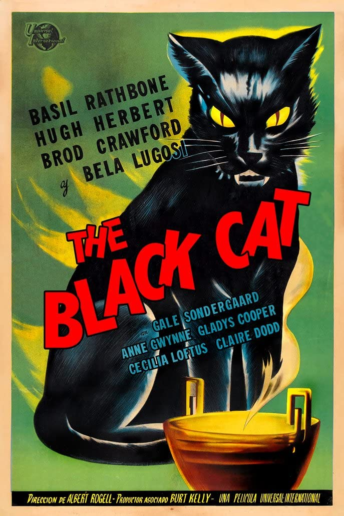 Digital Fusion Prints The Black Cat Movie Poster (1941) Poster 24