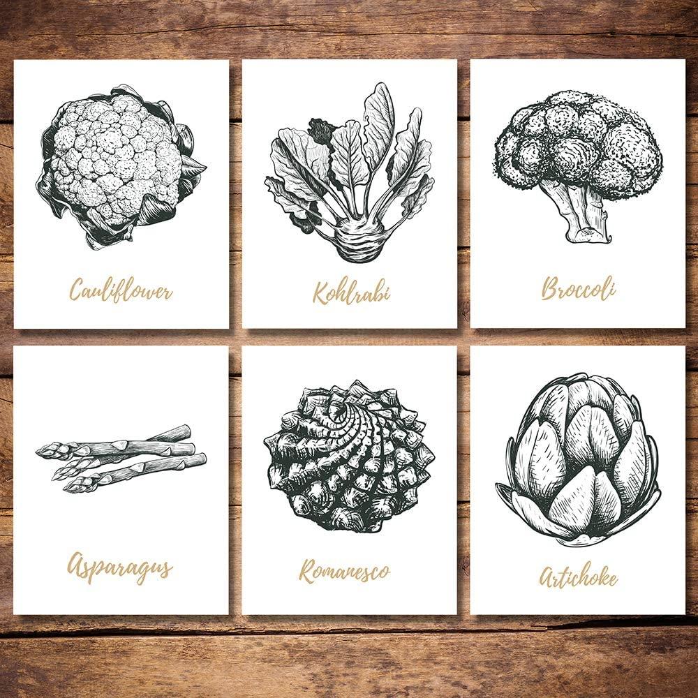 6 Panels Kitchen Wall Decor, Vintage Botanical Art Prints, Dining Room Decoration, 8x10 Modern Picture Print Artwork Unframed