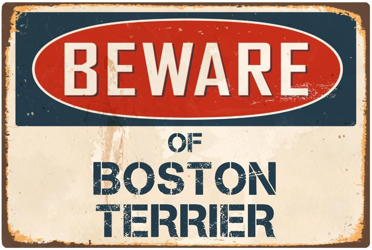"StickerPirate Beware of Boston Terrier 8"" x 12"" Vintage Aluminum Retro Metal Sign VS071"