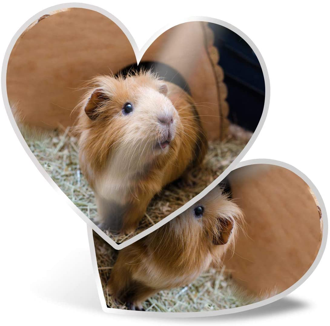 Awesome 2 x Heart Stickers 7.5 cm - Adorable Ginger Hamster Pet Fun Decals for Laptops,Tablets,Luggage,Scrap Booking,Fridges,Cool Gift #3820