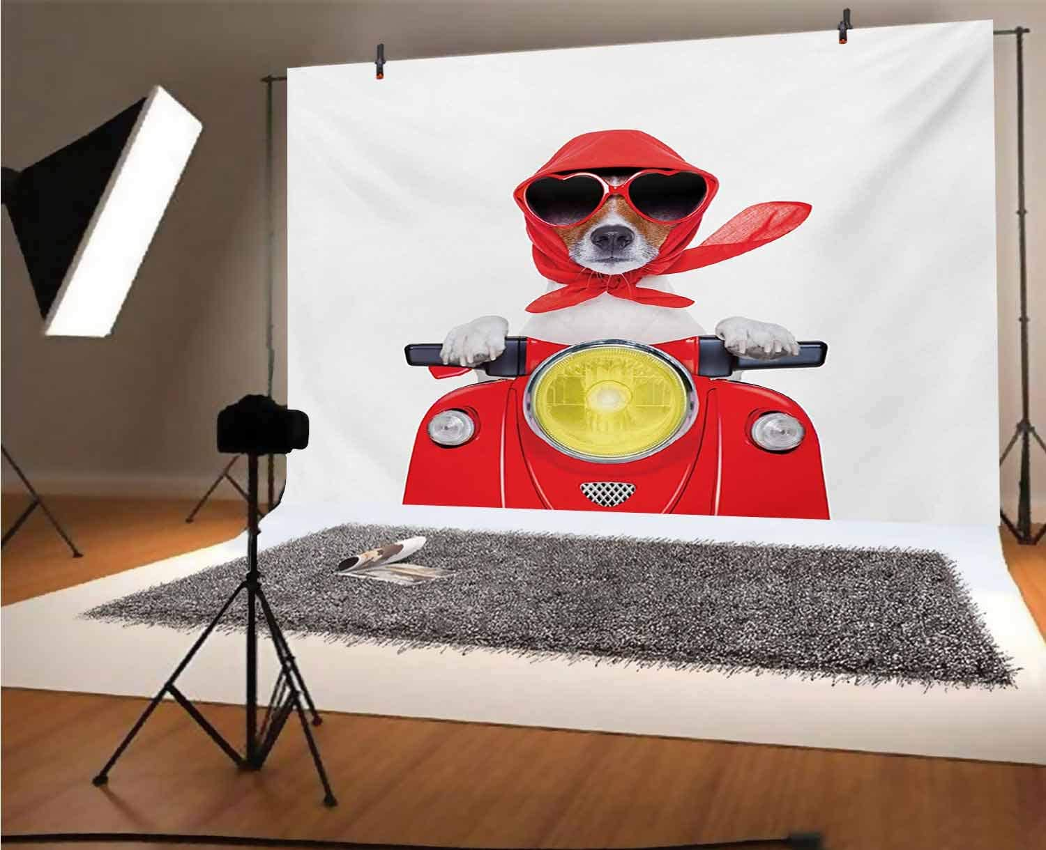 Dog Driver 20x10 FT Vinyl Photography Background Backdrops,Stylish Canine with Scarf Sunglasses Fashion Model Riding Scooter Funny Animal Background for Graduation Prom Dance Decor Photo Booth Studio