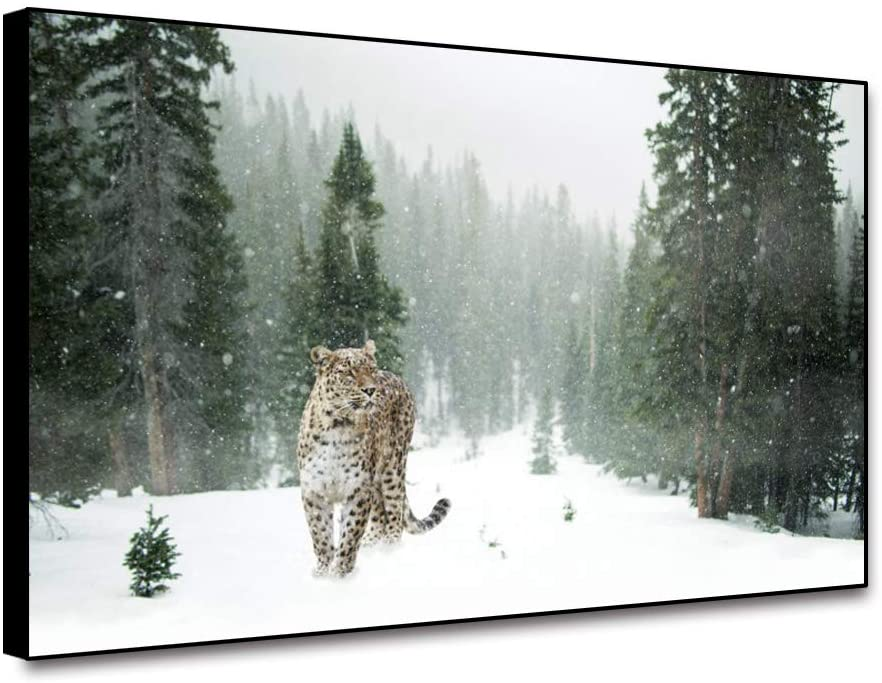 Cassisy Leopard Walking in Snow Green Forest Framed Canvas Wall Art Prints Modern Wall Painting for Home Decoration 24x16inch Canvas Printed Poster Wall Artwork Wall Picture for Living Room Bedroom