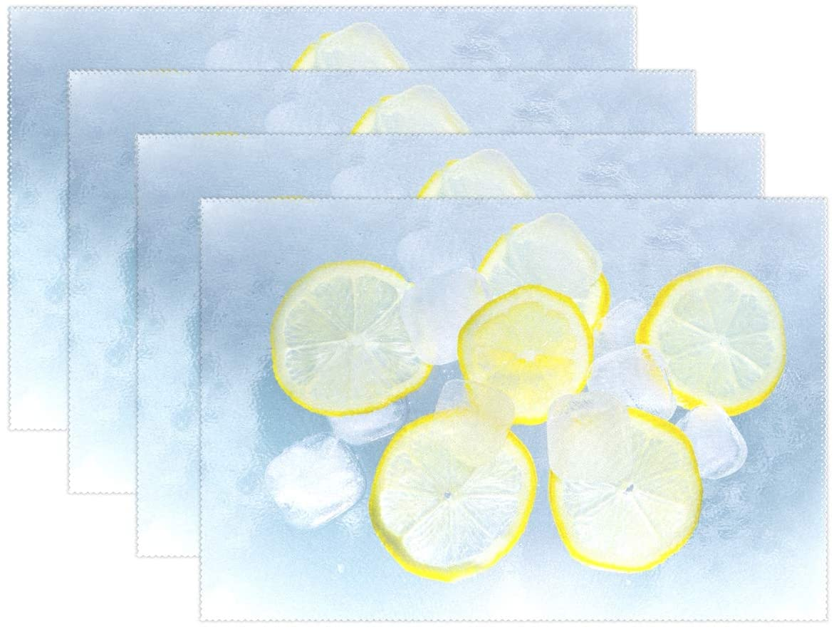 Holisaky Decoration Placemats Set of 6 Lemon and Ice Placemat for Dining Table Heat Resistant Non-Slip Kitchen Table Mats Easy to Clean