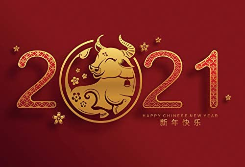 Baocicco 10x8ft Chinese New Year of 2021 Backdrop Year of The Ox Chinese Style Red Background Golden Ox for Photography Spring Festival Party Chinese Calendar New Year Family-Together Party