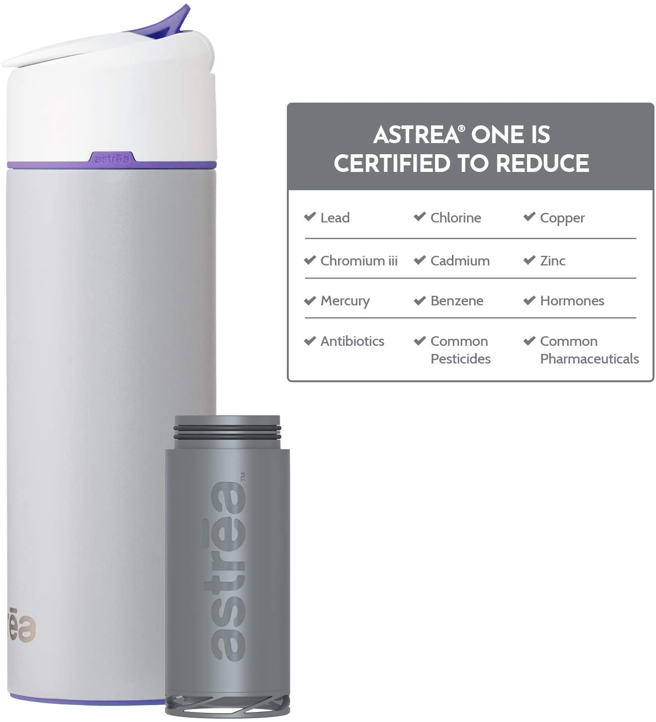 astrea ONE Premium Stainless Steel Filtered Water Bottle, 20 Oz, Meets NSF Standards 42, 53, and 401, Independently Certified, Grey/Purple (New & Improved)