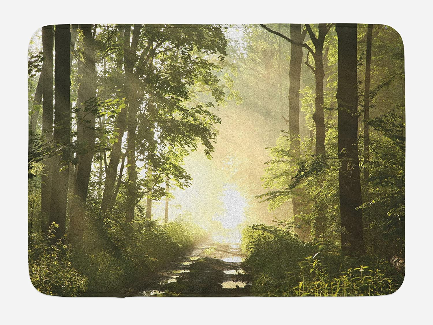 Lunarable Woodland Bath Mat, Idyllic Misty View of a Path in Spring Forest Surrounded by Maple Trees Puddles, Plush Bathroom Decor Mat with Non Slip Backing, 29.5