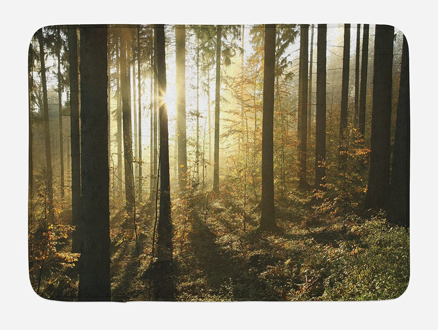 Lunarable Forest Bath Mat, Coniferous Forest and Misty Autumn Morning Sun Beams Through Pine Trees, Plush Bathroom Decor Mat with Non Slip Backing, 29.5
