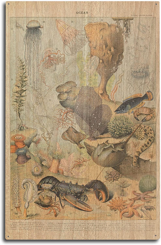 Lantern Press Marine Life - B - Vintage Bookplate - Adolphe Millot Artwork (10x15 Wood Wall Sign, Wall Decor Ready to Hang)