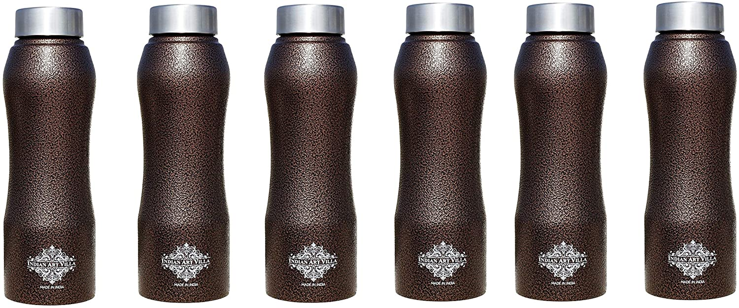 INDIAN ART VILLA Stainless Steel Water Bottle Antique Copper, 25 OZ,Set of 6