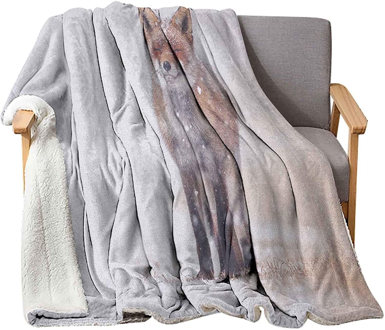 Interestlee Fox Blanket 40