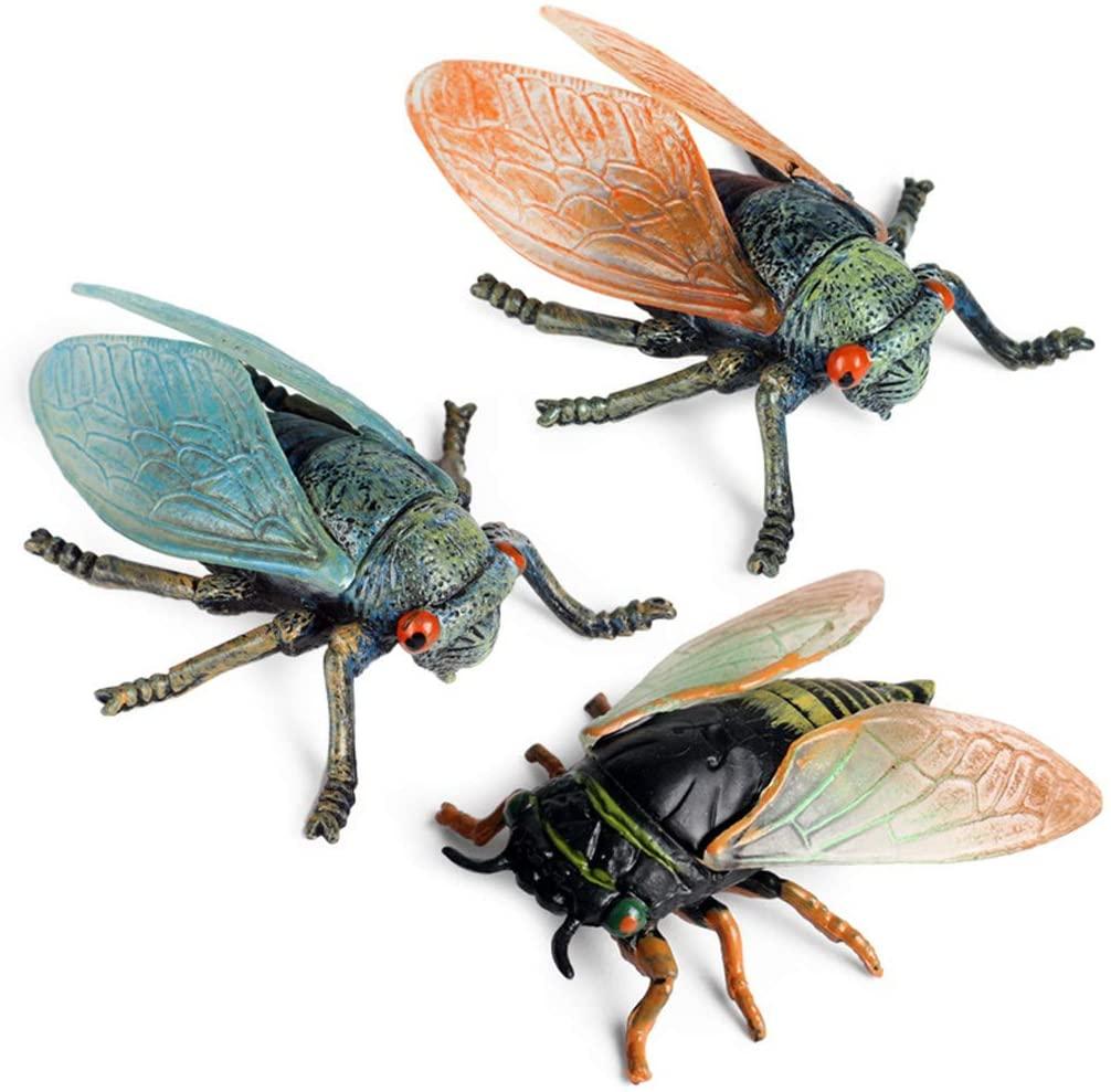 HUImiai 3pcs/Set Simulation Solid Static Animal Model,Realistic Insect Cicada Ornament,Children Educational Prop,Scene Decoration.