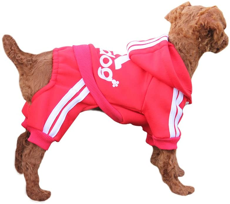 EASTCITIES BONDOGLAND Winter Puppy Hoodie for Small Dogs Boy Girl Warm Coat Sweater Four Legs Pet Clothes Sweatshirt for Dog Cat