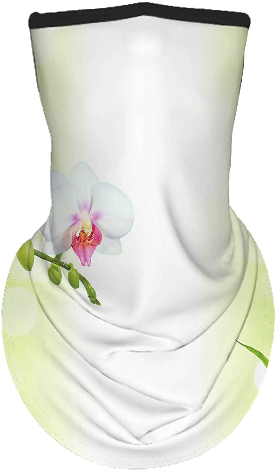Beach Tropical with White d and Turquoise Water Under Blue sk, Face Neck Gaiters ana Scarf
