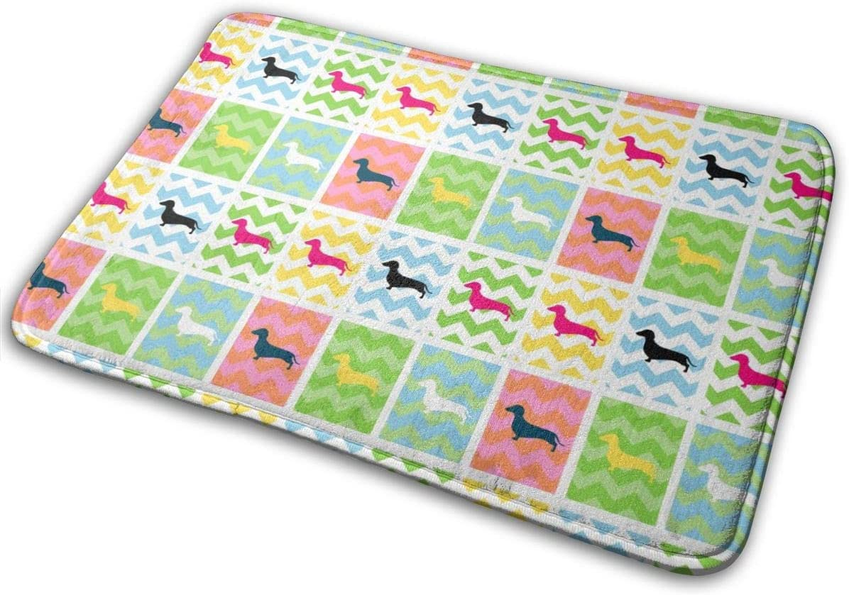 NiYoung Super Soft Out Rugs Flannel Throw Carpet Absorbent Shaggy Washable (16 Inches X 24 Inches) Use for Bathroom Shower Kitchen Porch - Colorful Dachshund Love Dog