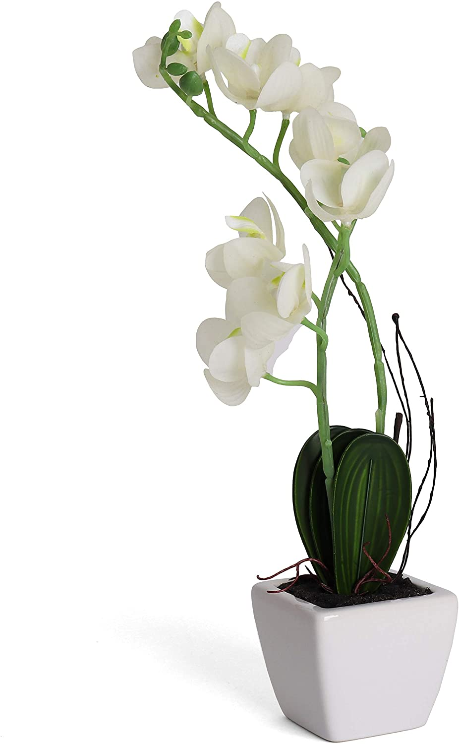 Bornbridge Artificial Orchid - Fake Orchid Plant with Real Touch Flowers - Faux Orchid with Long Stem Artificial Flowers - Potted Orchid/Plastic Orchid Fake Flowers - (Medium, White Orchid)